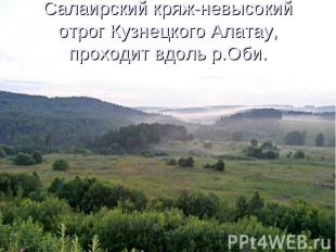 Салаирский кряж-невысокий отрог Кузнецкого Алатау, проходит вдоль р.Оби.