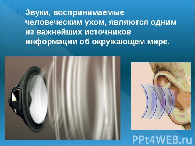 Звуки, воспринимаемые человеческим ухом, являются одним из важнейших источников информации об окружающем мире.