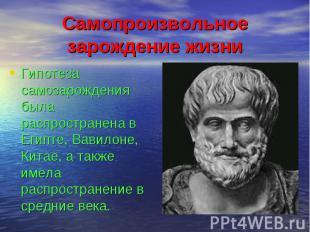 Самопроизвольное зарождение жизни Гипотеза самозарождения была распространена в