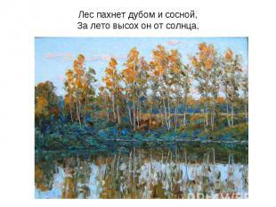 Лес пахнет дубом и сосной,За лето высох он от солнца,