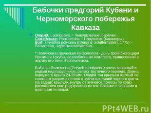 Бабочки предгорий Кубани и Черноморского побережья Кавказа Отряд: Lepidoptera =