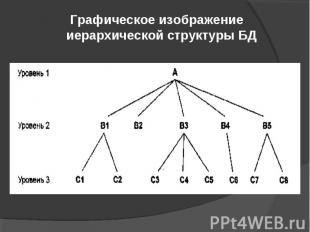 Графическое изображение иерархической структуры БД