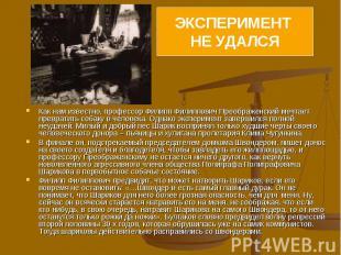 Как нам известно, профессор Филипп Филиппович Преображенский мечтает превратить