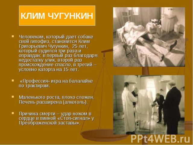 Человеком, который дает собаке свой гипофиз, становится Клим Григорьевич Чугункин, 25 лет, который судился три раза и оправдан: в первый раз благодаря недостатку улик, второй раз происхождение спасло, в третий – условно каторга на 15 лет. «Профессия…