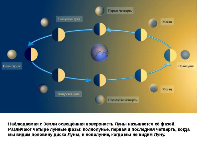 Наблюдаемая с Земли освещённая поверхность Луны называется еёфазой.Различают четыре лунные фазы: полнолунье, первая и последняя четверть, когда мы видим половину диска Луны, и новолуние, когда мы не видим Луну.
