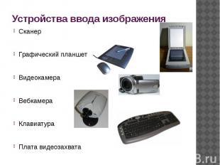 Устройства ввода изображения СканерГрафический планшетВидеокамераВебкамераКлавиа