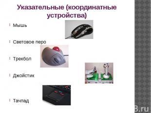 Указательные (координатные устройства) МышьСветовое пероТрекболДжойстикТачпад