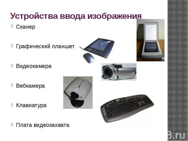 Устройства ввода изображения СканерГрафический планшетВидеокамераВебкамераКлавиатураПлата видеозахвата
