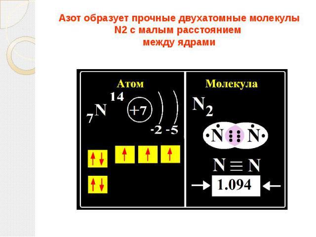 Азот образует прочные двухатомные молекулы N2 с малым расстоянием между ядрами