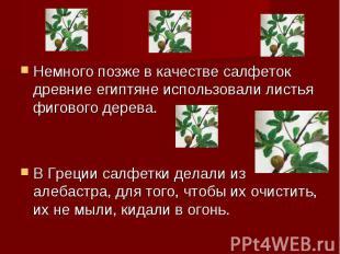 Немного позже в качестве салфеток древние египтяне использовали листья фигового