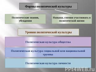 Формы политической культуры Политические знания, убеждения Навыки, умения участв