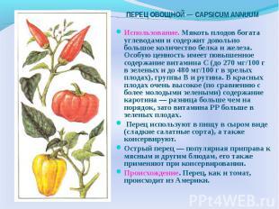 Использование. Мякоть плодов богата углеводами и содержит довольно большое колич