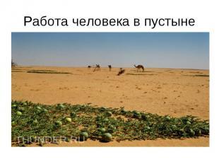 Работа человека в пустыне