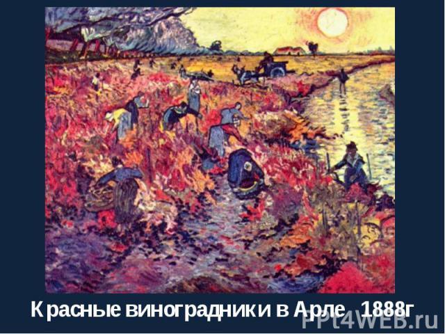 Красные виноградники в Арле 1888г