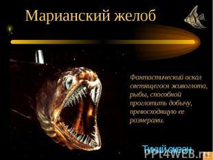 Марианский желоб Фантастический оскалсветящегося живоглота,рыбы, способной прогл