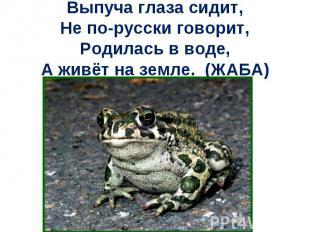 Выпуча глаза сидит,Не по-русски говорит,Родилась в воде,А живёт на земле. (ЖАБА)