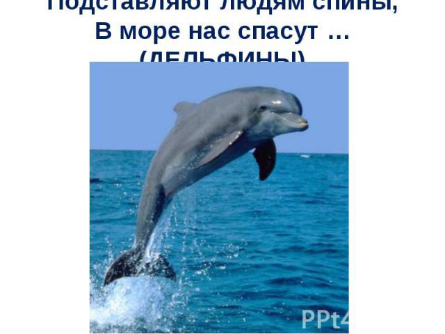 Подставляют людям спины, В море нас спасут … (ДЕЛЬФИНЫ)