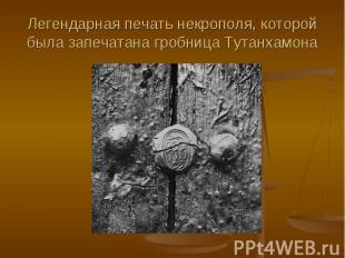Легендарная печать некрополя, которой была запечатана гробница Тутанхамона