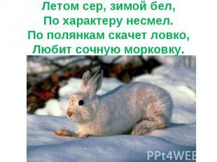 Летом сер, зимой бел,По характеру несмел.По полянкам скачет ловко,Любит сочную м