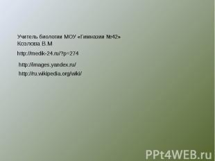 Учитель биологии МОУ «Гимназии №42»Козлова В.М http://medik-24.ru/?p=274 http://
