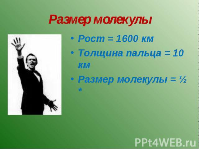 Размер молекулы Рост = 1600 кмТолщина пальца = 10 кмРазмер молекулы = ½ *