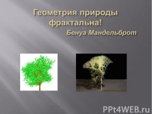 Геометрия природы фрактальна! Бенуа Мандельброт