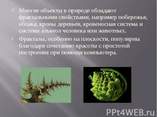 Многие объекты в природе обладают фрактальными свойствами, например побережья, о