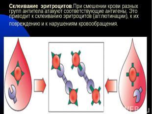 Склеивание эритроцитов.При смешении крови разных групп антитела атакуют соответс