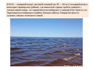 БОРА— северный ветер), местный сильный (до 40 — 60 м/с) холодный ветер в некотор