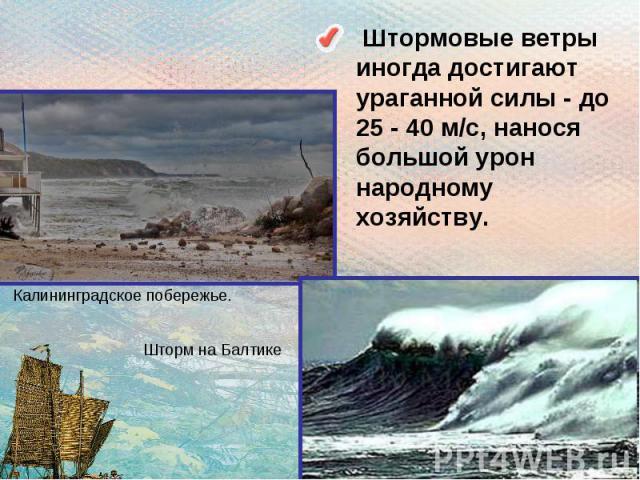 Штормовые ветры иногда достигают ураганной силы - до 25 - 40 м/с, нанося большой урон народному хозяйству.