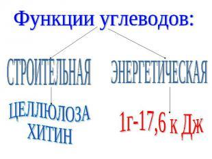 Функции углеводов: СТРОИТЕЛЬНАЯ ЦЕЛЛЮЛОЗАХИТИН ЭНЕРГЕТИЧЕСКАЯ 1г-17,6 к Дж