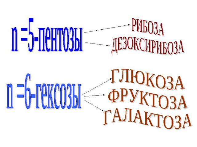 n =5-пентозы n =6-гексозы РИБОЗАДЕЗОКСИРИБОЗА ГЛЮКОЗАФРУКТОЗАГАЛАКТОЗА