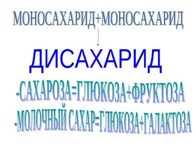 МОНОСАХАРИД+МОНОСАХАРИД ДИСАХАРИД -МОЛОЧНЫЙ САХАР=ГЛЮКОЗА+ГАЛАКТОЗА -САХАРОЗА=ГЛЮКОЗА+ФРУКТОЗА