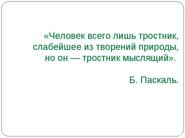 «Человек всего лишь тростник, слабейшее из творений природы, но он — тростник мыслящий». Б. Паскаль.