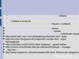 http://kapellan.ru/zelenye-rubezhi-rodiny.html - собакаhttp://planeta.moy.su/blo