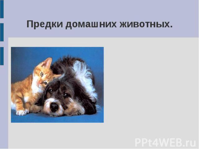 Предки домашних животных