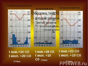 Субэкваториальный поясТропический пояс Субтропический пояс t янв.+30 С0t июл. +2
