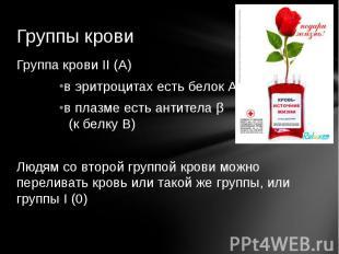 Группы кровиГруппа крови II (А)в эритроцитах есть белок А в плазме есть антитела