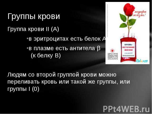 Группы кровиГруппа крови II (А)в эритроцитах есть белок А в плазме есть антитела β (к белку В)Людям со второй группой крови можно переливать кровь или такой же группы, или группы I (0)