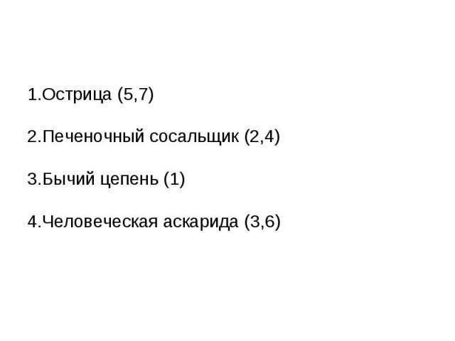 1.Острица (5,7)2.Печеночный сосальщик (2,4)3.Бычий цепень (1)4.Человеческая аскарида (3,6)