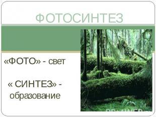 ФОТОСИНТЕЗ «ФОТО» - свет« СИНТЕЗ» - образование
