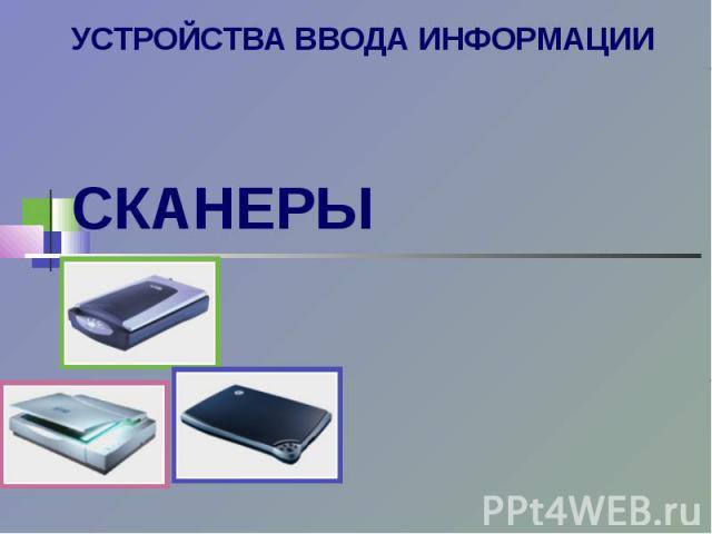 Устройства ввода информации. Сканеры