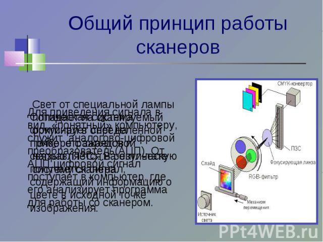 Общий принцип работы сканеров Для приведения сигнала в вид, «понятный» компьютеру, служит аналогово-цифровой преобразователь(АЦП). От АЦП цифровой сигнал поступает в компьютер, где его анализирует программа для работы со сканером. Оптическая систем…