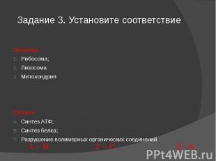 Задание 3. Установите соответствие ОрганоидРибосома;ЛизосомаМитохондрияПроцессСи