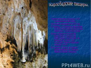 Карлсбадские пищеры. Карлсбадские пещеры- это национальный парк,Который находитс