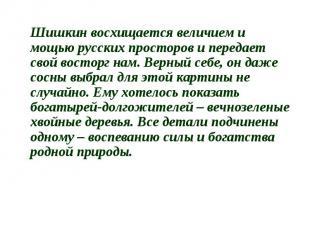 Шишкин восхищается величием и мощью русских просторов и передает свой восторг на