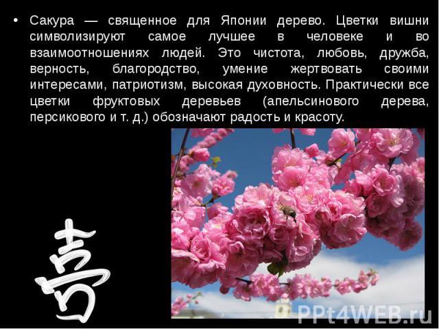 Сакура — священное для Японии дерево. Цветки вишни символизируют самое лучшее в человеке и во взаимоотношениях людей. Это чистота, любовь, дружба, верность, благородство, умение жертвовать своими интересами, патриотизм, высокая духовность. Практичес…