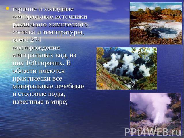 горячие и холодные минеральные источники различного химического состава и температуры, всего 274 месторождения минеральных вод, из них 160 горячих. В области имеются практически все минеральные лечебные и столовые воды, известные в мире;