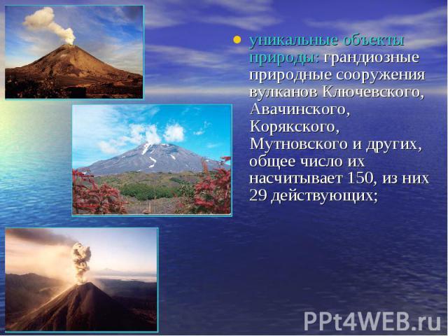 уникальные объекты природы: грандиозные природные сооружения вулканов Ключевского, Авачинского, Корякского, Мутновского и других, общее число их насчитывает 150, из них 29 действующих;