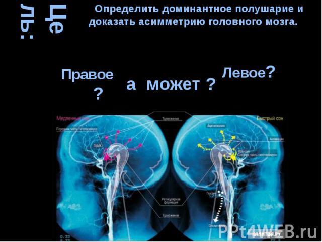 Цель: а может ? Определить доминантное полушарие и доказать асимметрию головного мозга.